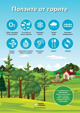 Ползите от горите